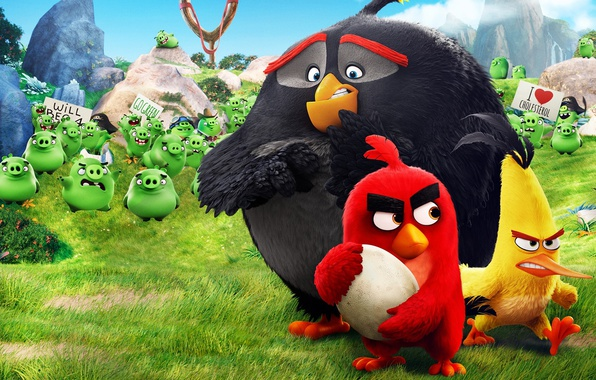 Картинка Red, game, pirate, birds, film, animated, angry, Angry Birds, Bad Piggies, pigs, animated movie, Bomb, …