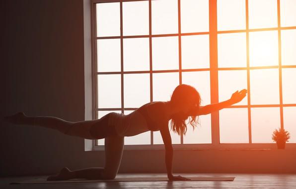 Картинка girl, sun, fitness