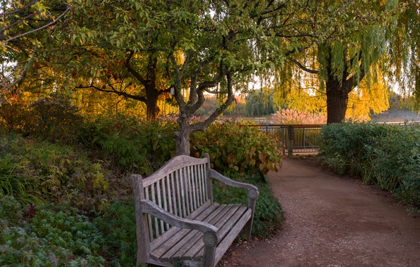 Скамейка в парке картинки