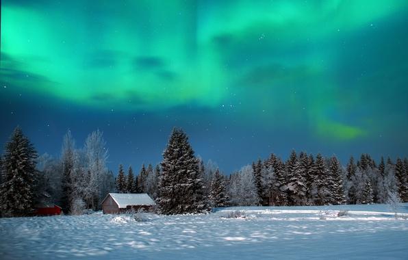 Картинка зима, лес, небо, снег, ночь, природа, северное сияние, домики, сараи