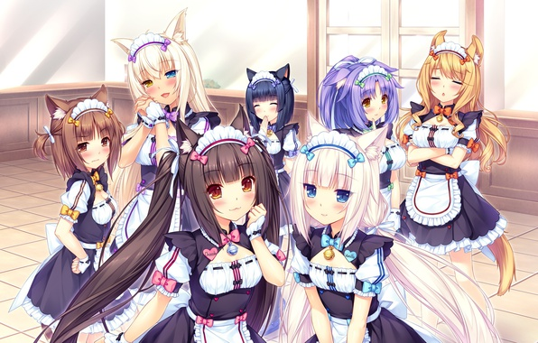 Картинка девушки, форма, неко, ушки, anime, art, Vanilla, Maple, Chocola, Cinnamon, Neko Para, Azuki, Coconut