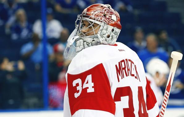 Обои Игра, Спорт, Лед, Петр, Лёд, Detroit, NHL, НХЛ, Хоккей, Национальная хоккейная лига, Red Wings, Детройт, …