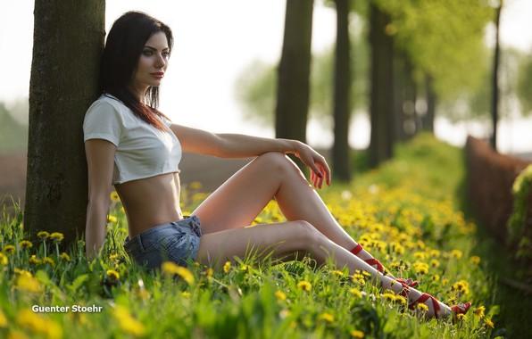 Картинка girl, grass, shorts, long hair, legs, trees, field, breast, photo, photographer, flowers, model, bokeh, lips, …