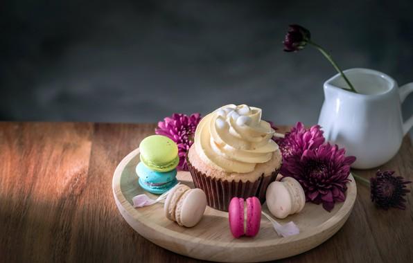 Картинка цветы, colorful, десерт, flowers, пирожные, сладкое, sweet, cupcake, dessert, macaroon, french, macaron, капкейк, макаруны