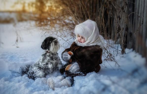 Картинка зима, снег, собака, девочка, платок, бублик
