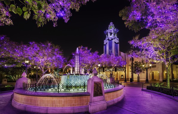 Картинка город, парк, ночные огни, красота, фантан
