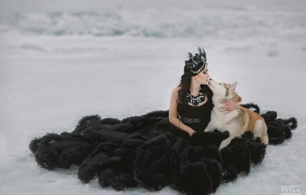 Картинка девушка, снег, поцелуй, собака, платье