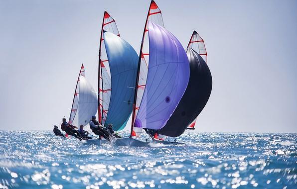 Картинка море, небо, солнце, лодки, горизонт, паруса, регата, парусный спорт