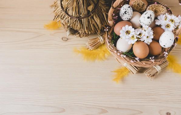 Картинка Цветы, Перья, Пасха, Яйца, Корзина, Праздник