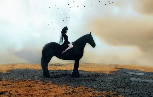 Картинка девушка, лошадь, Kindra Nikole, нездница