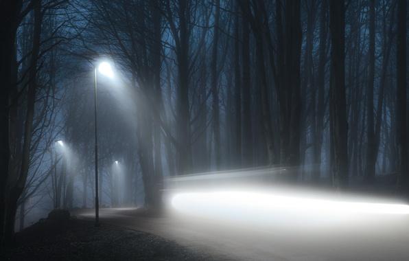 Картинка дорога, свет, ночь, туман