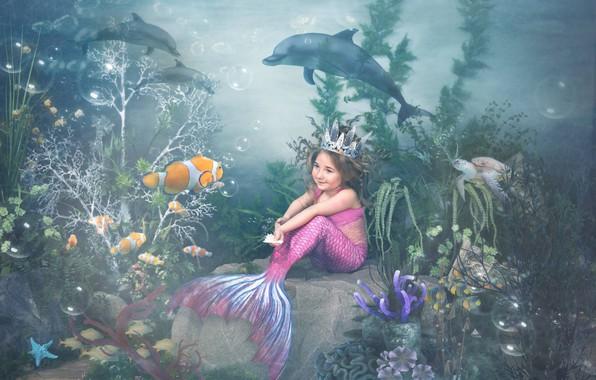 Картинка рыбы, водоросли, черепаха, кораллы, девочка, дельфины, подводный мир, русалочка
