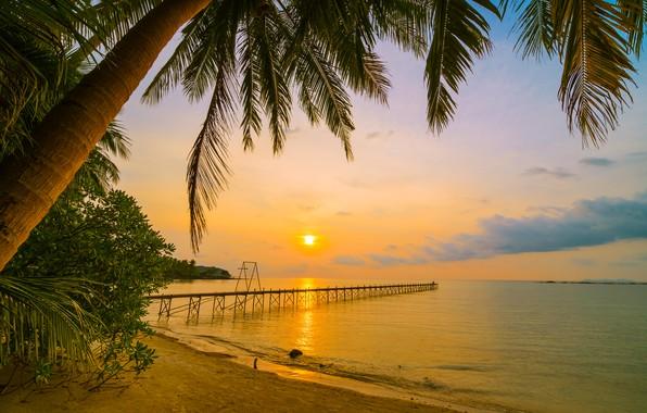 Картинка песок, море, волны, пляж, лето, закат, пальмы, берег, summer, beach, sea, sunset, seascape, beautiful, sand, …
