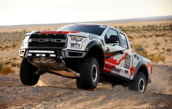 Картинка растительность, пустыня, Ford, пыль, Raptor, пикап, F-150