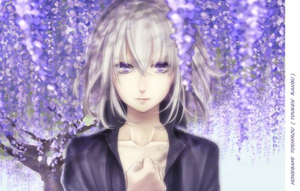 Картинка лицо, мальчик, руки, цветение, белые волосы, челка, глициния, honebami toshiro, Touken Ranbu