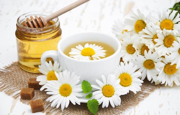 Картинка цветы, ромашки, мед, чай душистый