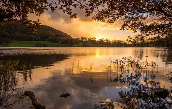 Фото обои Закат, Природа, Озеро