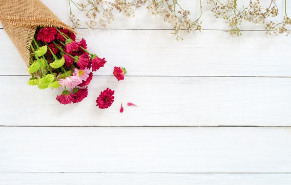 Бесплатно обои на рабочий стол хризантемы