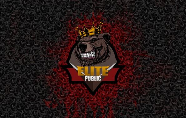 Картинка Команда, Медведь, Сервер, Bear, cs 1.6, Server, Элитный Паблик, Elite Public