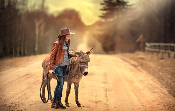 Картинка дорога, девочка, ослик