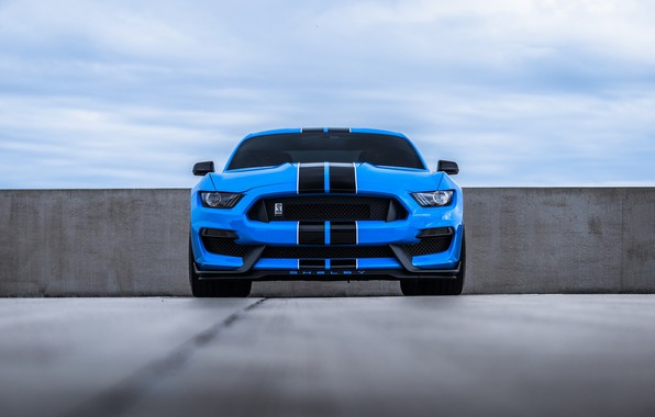 Картинка Mustang, Ford, Blue, Front, Cobra, Face, Sight