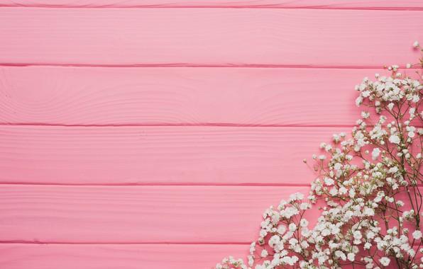 Картинка цветы, фон, дерево, розовый, texture, pink, flowers, background, wooden, spring, tender, floral