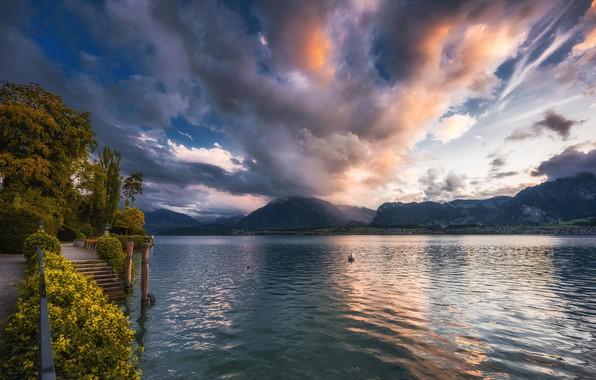 Картинка небо, облака, деревья, горы, озеро, вечер, Швейцария, лестница, набережная, кусты, Lake Thun