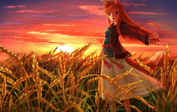 Картинка Солнце, Поле, Колосья, Глаза, Аниме, Пшеница, Anime, Хоро, Рыжая, Sun, Волчица и пряности, Холо, Eyes, ...