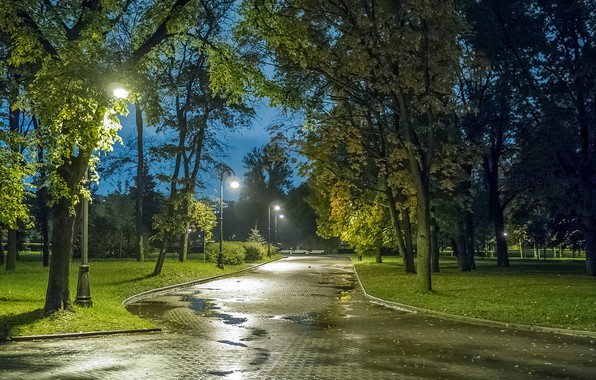 Картинка осень, огни, парк, вечер, Санкт-Петербург