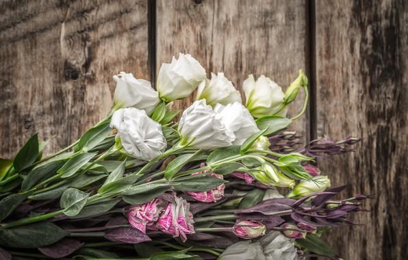 Картинка цветы, букет, бутон, эустома