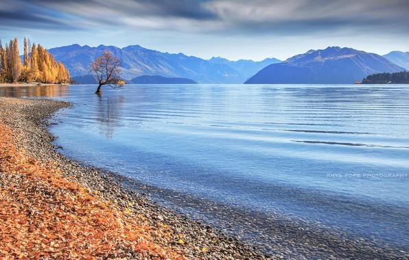 Картинка осень, озеро, берег