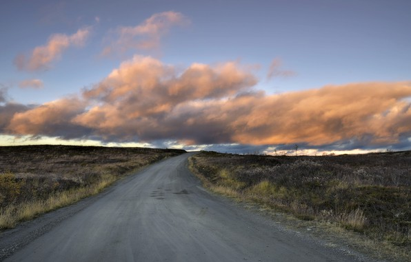 Фото обои дорога, поле, утро