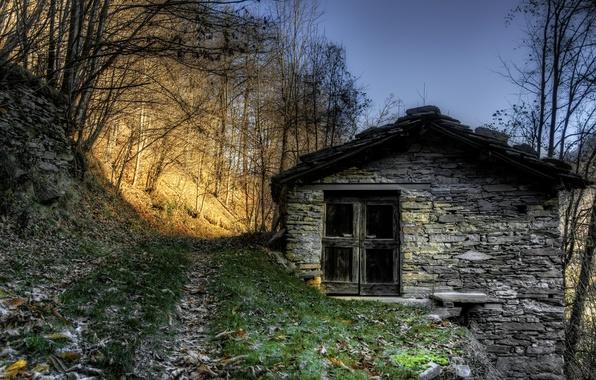 Картинка дорога, свет, дом