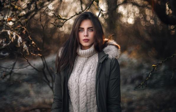 Картинка взгляд, девушка, ветки, лицо, блики, милая, модель, портрет, макияж, брюнетка, куртка, beautiful, симпатичная, шикарная, свитер, …
