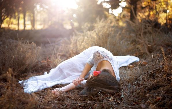 Картинка цветок, трава, девушка, лежит