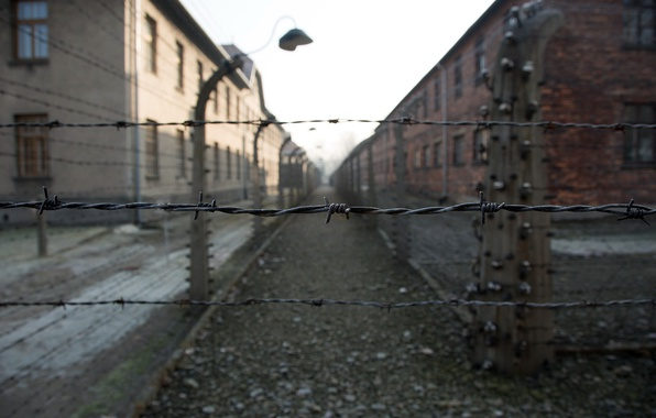 Картинка свобода, смерть, Auschwitz, фашизм