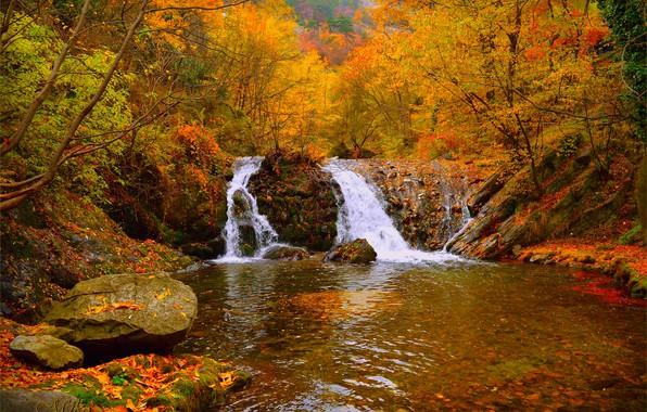 Картинка Водопад, Осень, Лес, Fall, Autumn, Waterfall, Forest