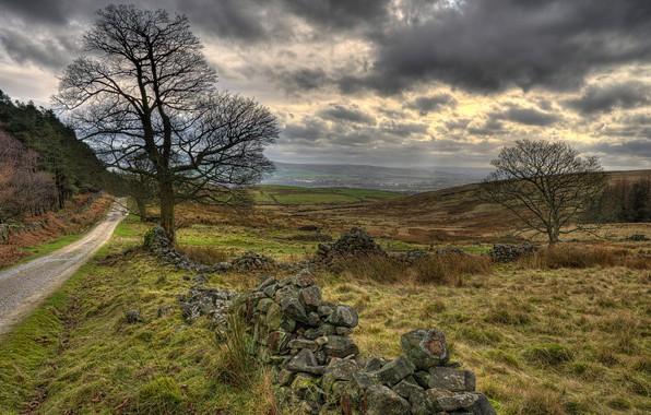 Картинка дорога, поле, трава, облака, пасмурно, Британия, Walker Fold, Chaigley, Rose Cottage