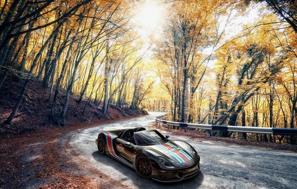 Картинка Porsche, Spyder, 918, Autumn, Martini, VAG