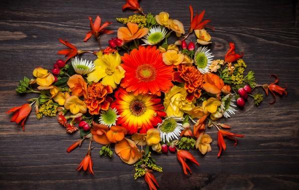 Картинка осень, листья, цветы, wood, flowers, autumn, leaves, композиция, floral