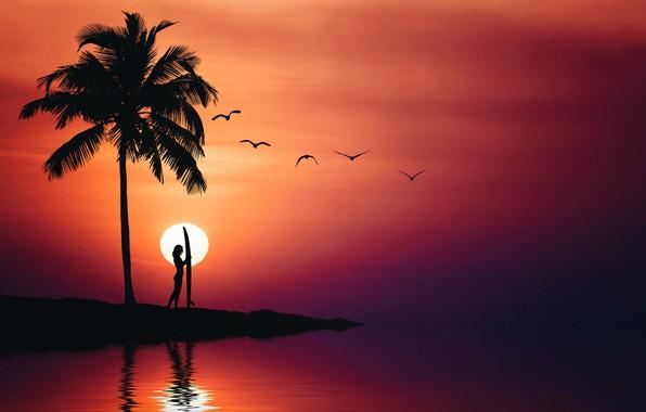 Картинка море, лето, небо, девушка, птицы, пальма, силуэт