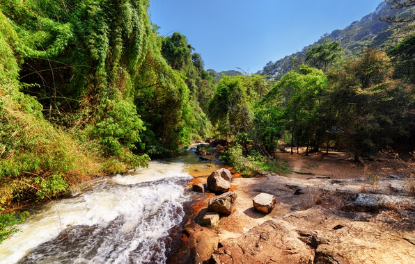 Картинка лес, деревья, горы, ручей, камни, Вьетнам, солнечно