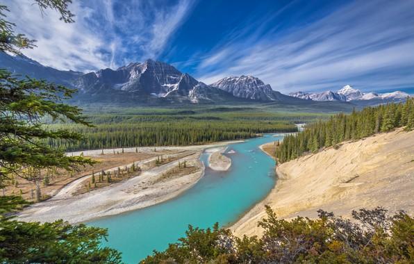 Картинка лес, горы, река, Канада, Альберта, Alberta, Canada, Jasper National Park, Национальный парк Джаспер, Athabasca River, …