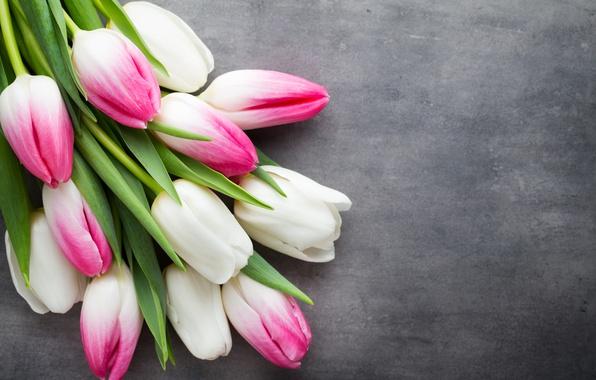Картинка цветы, букет, тюльпаны, розовые, white, белые, fresh, pink, flowers, beautiful, tulips, spring