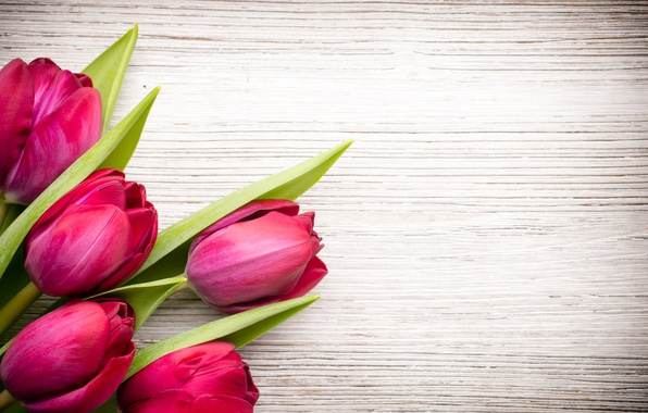 Картинка цветы, букет, fresh, wood, pink, flowers, beautiful, tulips, розовые тюльпаны