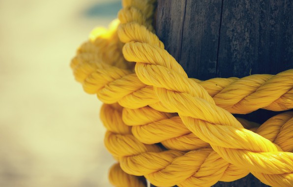 Картинка Tree, Rope, YELLOW