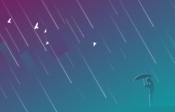 Картинка фиолетовый, птицы, дождь, человек, зонт, rain, umbrella, man, прямоугольник, лазурно-серый, приглушение