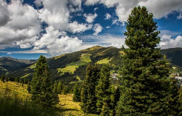 Картинка зелень, лето, небо, солнце, облака, деревья, горы, поля, дома, Австрия, долина, леса, луга, Koenigsleiten
