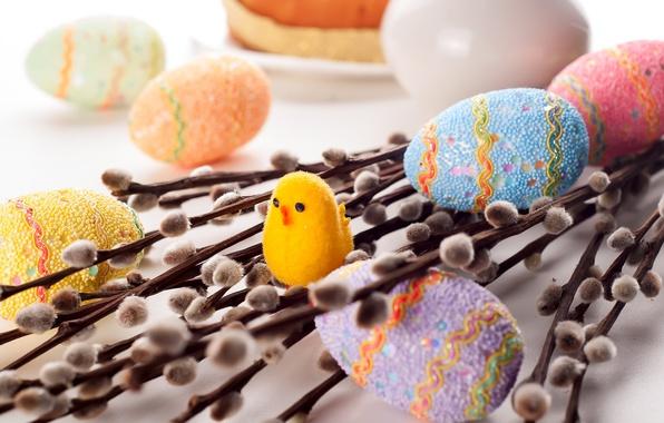 Картинка ветки, праздник, яйца, Пасха, цыплёнок, верба, крашенки
