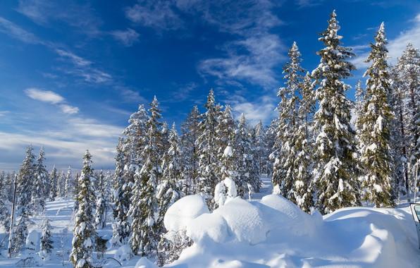 Картинка зима, лес, небо, снег, ели, сугробы, Швеция, Sweden, Селен, Sälen